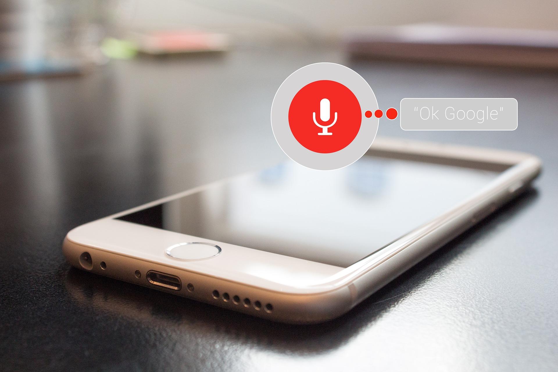 voice shopping big data