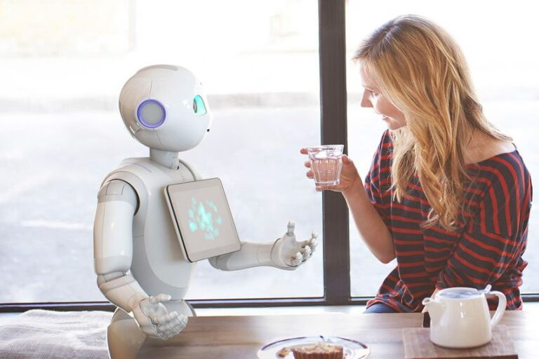 Robotics in Domestic Field