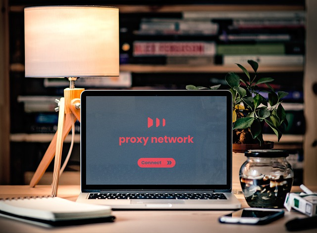 ip rotation proxy network